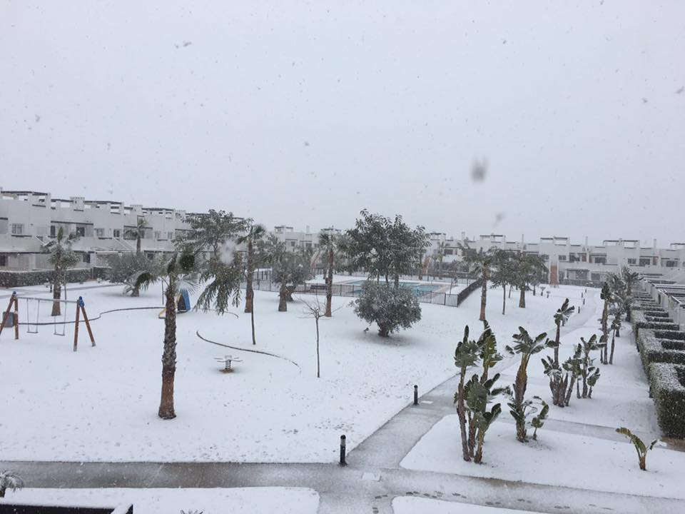 Snow on Condado de Alhama January 2017