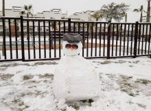 Snowman on Naranjos 4