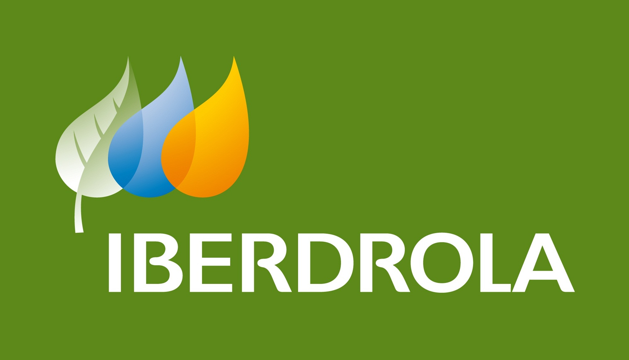 Iberdrola Electricity Supplier