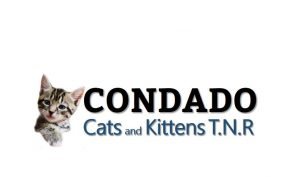 Condado Cats and Kittens T.N.RCondado Cats and Kittens T.N.R