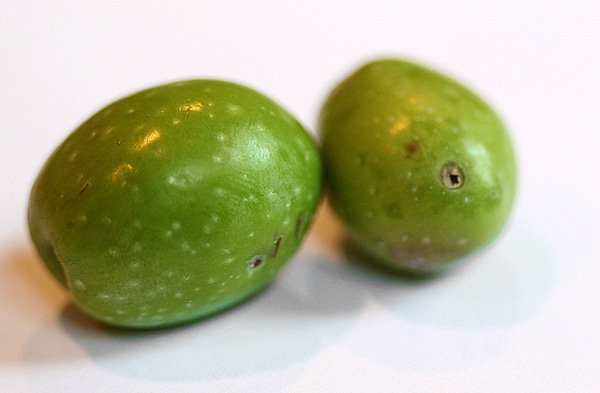 Free olives!