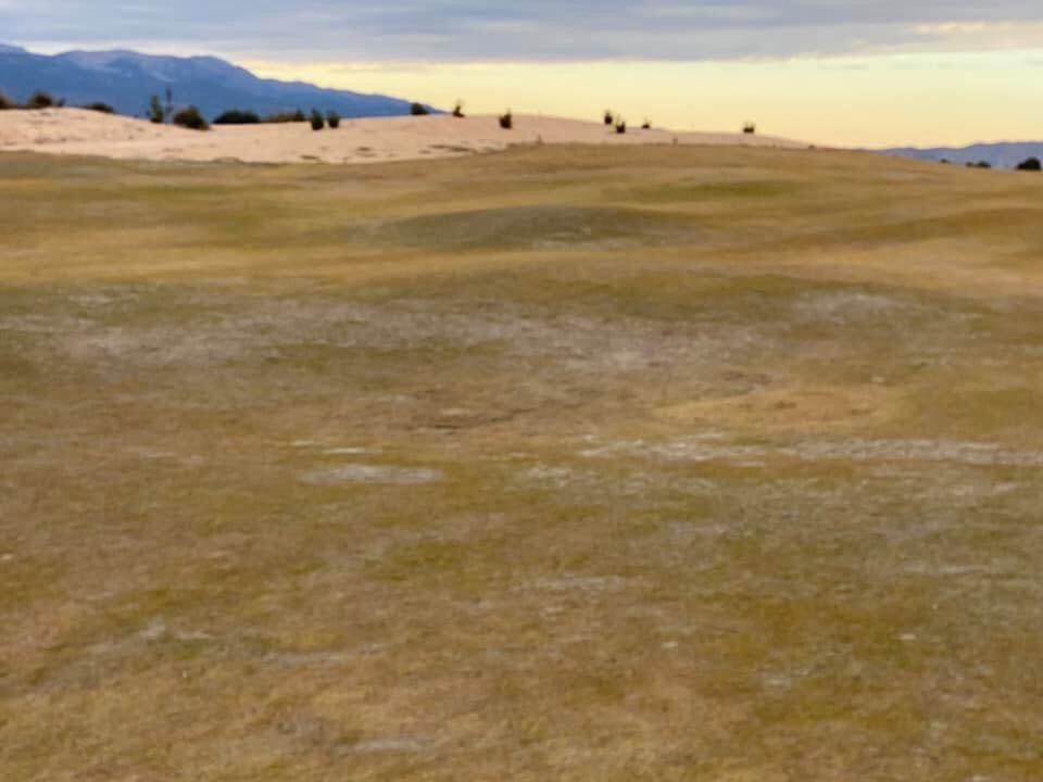 Concerns have been raised over the lack of maintenance during golf course closure
